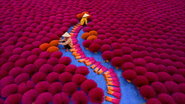 VIT1807AW Incense workers sits surrounded by thousands of incense sticks in Quang Phu Cau, Hanoi, Vietnam.