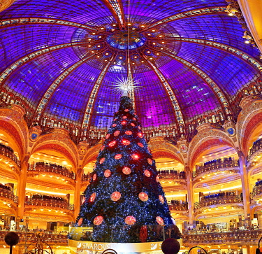 France, Paris, boulevard Haussmann, the department store of the Galeries Lafayette and its Chritmas tree