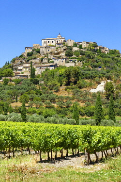 France, Provence-Alpes-Cote D'Azur, Vaucluse, regional natural reserve of Luberon, Gordes, Most beautiful Villages of France (Les Plus Beaux Villages de France), vineyard in front of the village perch...