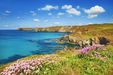 Cliff landscape near Pentreath Beach - United Kingdom, England, Cornwall, Lizard, Pentreath Beach - Lizard Peninsula