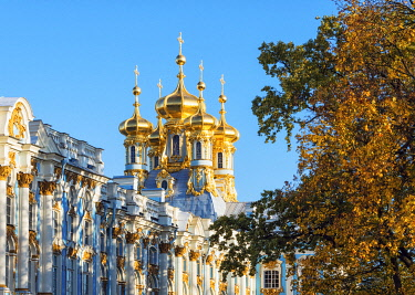 Golden domes of the Church of the Resurrection, Catherine Palace, Pushkin (Tsarskoye Selo), near St. Petersburg, Russia