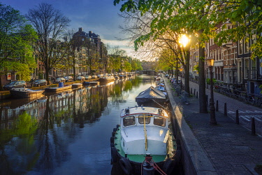 Europe, Netherlands, Amsterdam, city centre, sunset through Spring trees illuminating a canal and canal boats