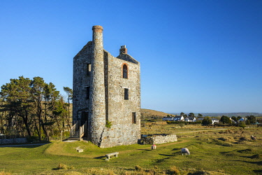 Ruined engine house at former tin mine, Minions, Bodmin Moor, Cornwall, England, UK