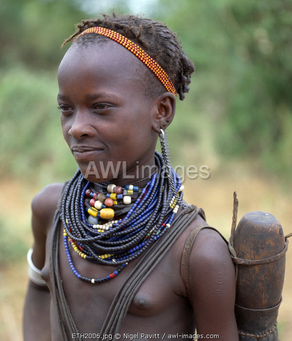 An attractive Dassanech girl. Her adornment is typical of the girls of her tribe. Since the Omo Delta is one of the least accessible and least developed parts of East Africa the culture, social organization, customs and values of the people have changed less than elsewhere.The Dassanech speak a language of Eastern Cushitic origin. They practice animal husbandry and fishing as well as agriculture.