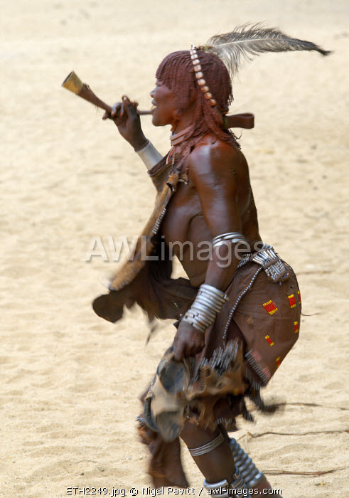 awl-images.com - Ethiopia / An old Hamar woman dances and blows a trumpet at a 'Jumping of the Bull' ceremony. The Hamar are semi-nomadic pastoralists of Southwest Ethiopia whose women wear striking traditional dress and style their red-ochred hair mop-fashion. Skins are widely used for clothing and heavy metal necklaces, bracelets and anklets form part of their adornments. Cowries are also popular yet the sea is 500 miles from Hamar country.The 'Jumping of the Bull' ceremony is a rite of passage for young men. The climax to the ceremony is when the initiate leaps onto a line of ten or more of his family's bulls and runs along their backs; he must complete the feat twice in each direction. After the ceremony, the initiate attains full manhood and is permitted to marry.B0014P 0491Nigel Pavitt52005100656065811+03006