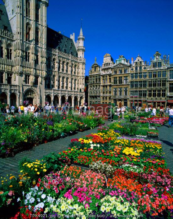 Grand Place / Flower Market, Brussels, Belgium