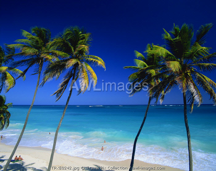 Caribbean, Barbados, Bottom Bay
