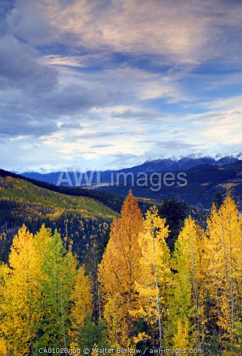 Rogers Pass, Glacier National Park, British Columbia, Canada