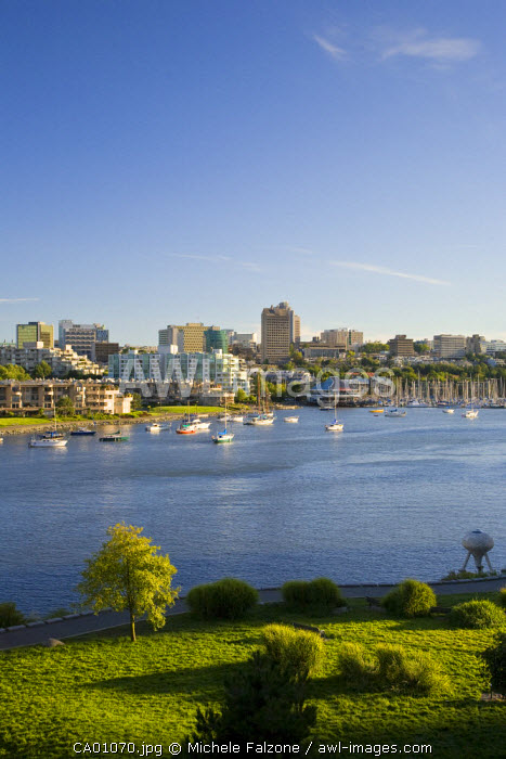 False Creek and Charleson Park, Vancouver, British Columbia, Canada