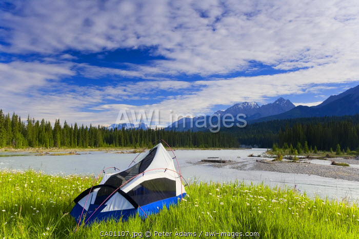 Tent, Kootenay National Park, British Columbia, Canada