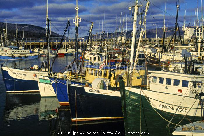 Fishing Fleet, Digby, Nova Scotia, Canada