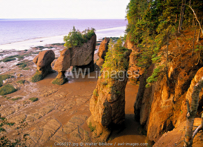 Hopewell Cape, New Brunswick, Canada