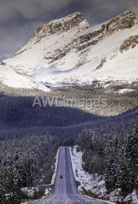 Icefields Parkway (Rt.93),  Banff National Park, Alberta, Canada