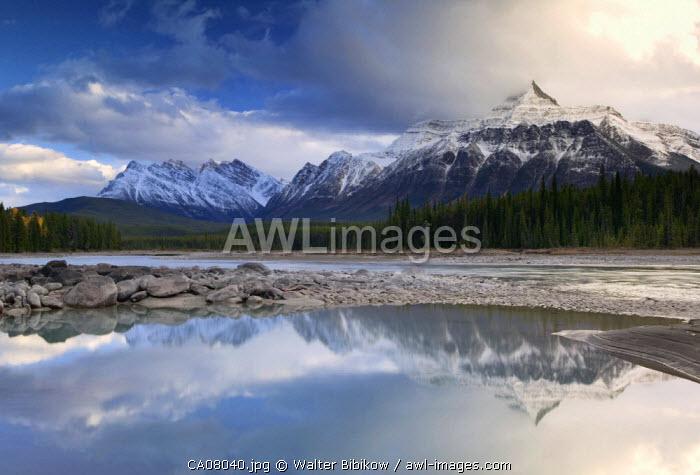 Athabasca Valley, Jasper National Park, Alberta, Canada