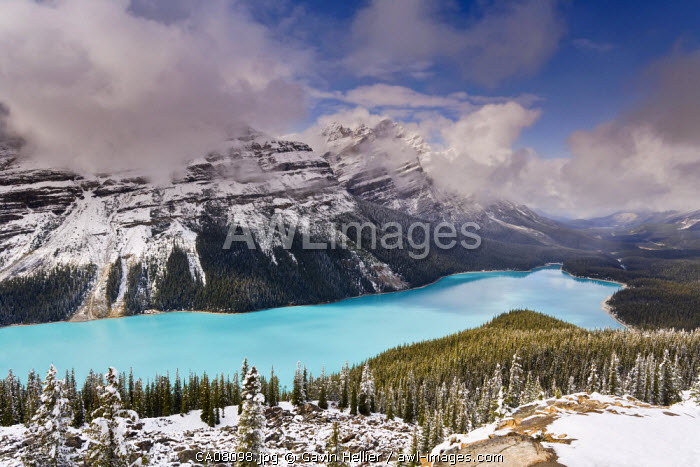 Peyto Lake, coloured by glacial silt, Banff-Jasper National Parks, Canada