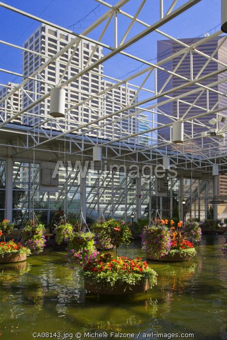 The indoor Devonian Gardens, downtown Calgary, Alberta, Canada