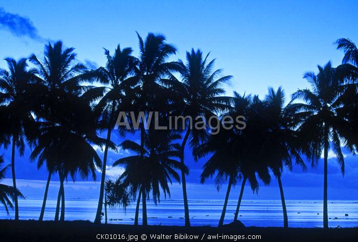 Palm Trees, Ureia, Aitutaki, Cook Islands