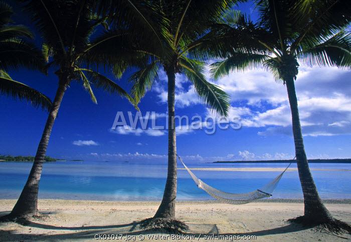 Palms and Hammock, Akitua Motu, Aitutaki, Cook Islands
