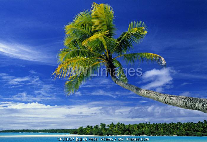 Beach, North Aitutaki Island, Cook Islands