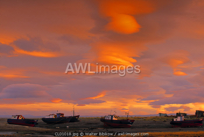Punta Arenas, Magellanes, Chile