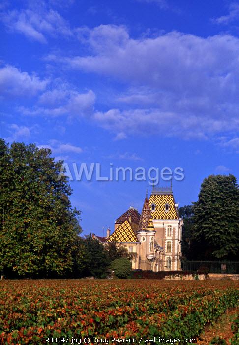 Corton Le Chateau, Aloxe-Corton, Cote-D'Or, Burgundy, France