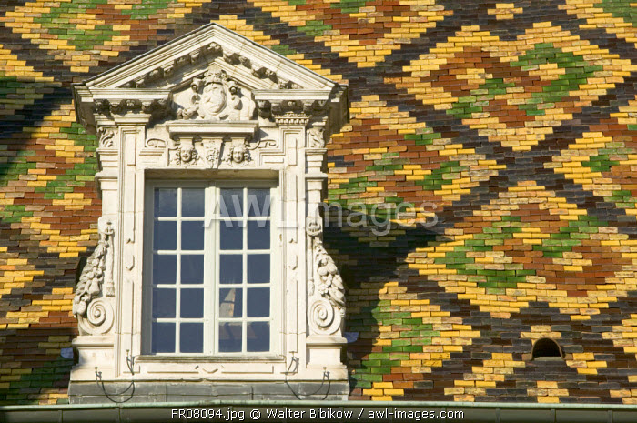 Hotel de Vogue, Dijon, Burgundy, France