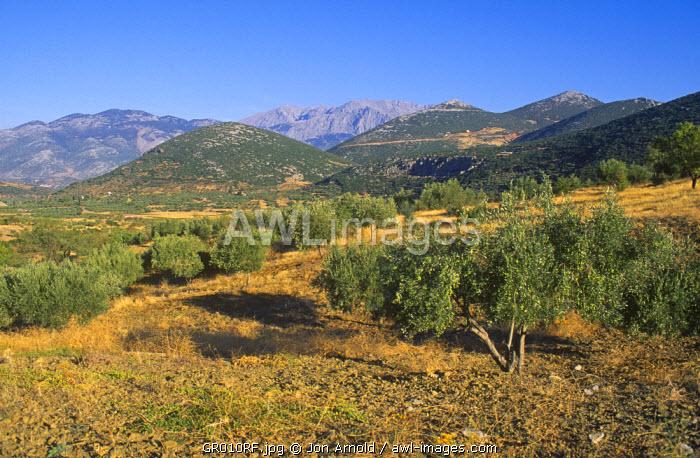 Landscape of central Peloponnese, Greece