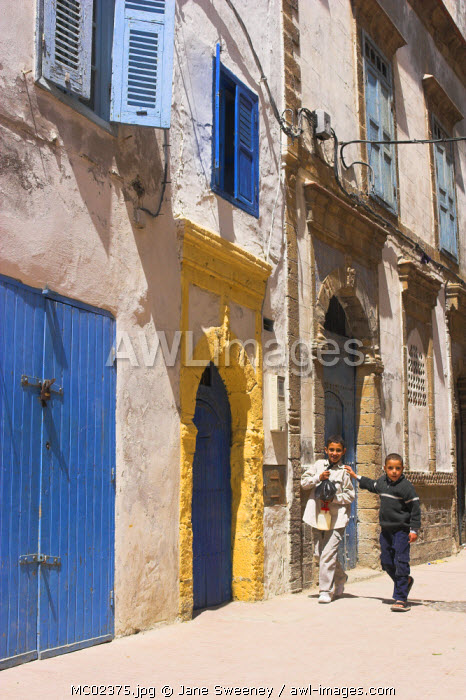 awl-images.com - Morocco / Morocco, Essaouira, Medina alley with blue painted doors and window shutters