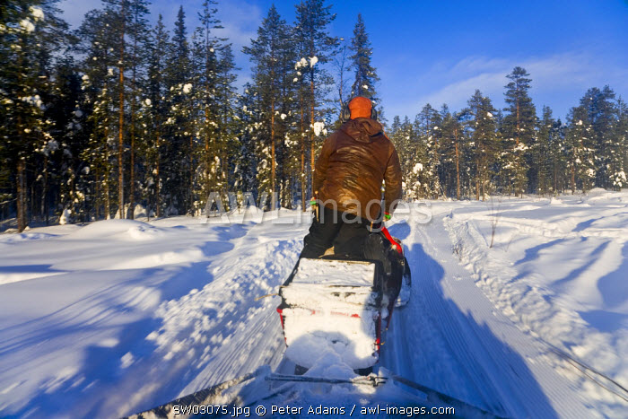 Man on snow mobile, Jokkmokk, Norrbotten, Northern Sweden