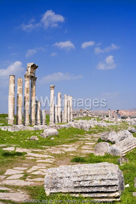 Roman city of Apamea, Syria