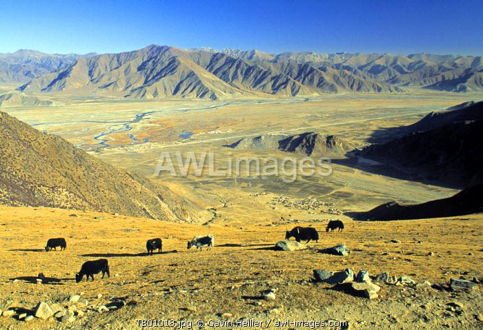 High Plateau in Tibet