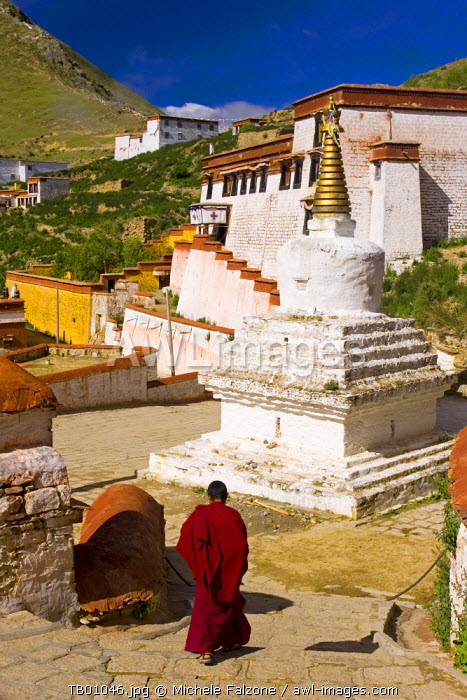 Monks and Stupas at Ganden Monastery, Tagtse county, Tibet