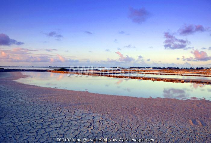 Salt Ponds, Salt Cay Island, Turks & Caicos, Caribbean