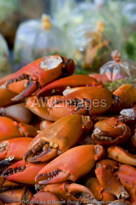 Crabs, Bangkok, Thailand