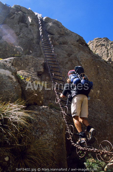 South Africa, KwaZulu Natal, Drakensberg Mountains. A walker negotiates a fixed ladder on the way up Mount-aux-Sources (3299m), Royal Natal National Park