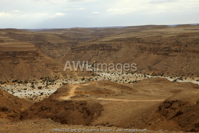 Oman, Dhofar.  The winding unmade road which leads down from the plateau into the Wadi Uyun, during the dry winter.