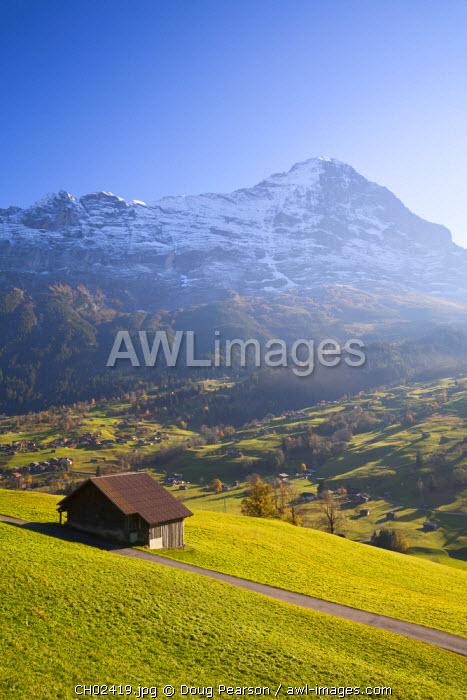 Alpine Meadow, Eiger & Grindelwald, Berner Oberland, Switzerland