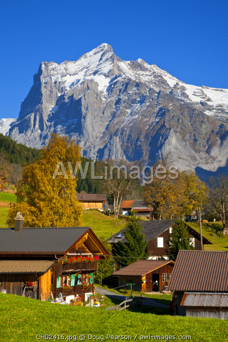 Traditional Houses, Wetterhorn & Grindelwald, Berner Oberland, Switzerland