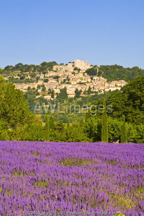 Lacoste & Lavender Fields, Luberon, Vaucluse Provence, France