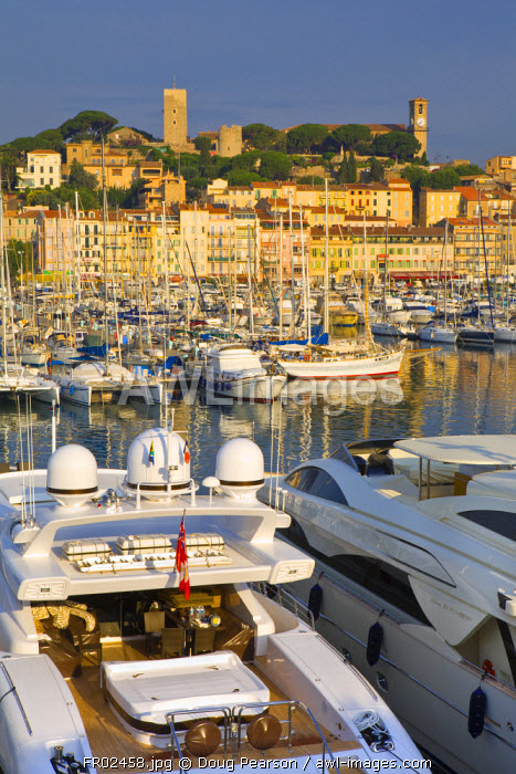 Vieux Port (Old Harbour) and old quarter of Le Suquet, Cannes, Cote D'Azur, France