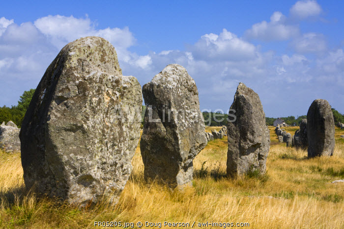 awl-images.com - France / Alignments de Kerlescan, Carnac, Brittany, France