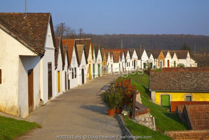 Wine Cellars, Villany Kovesd, Villany Wine Region, Southern Transdanubia, Hungary