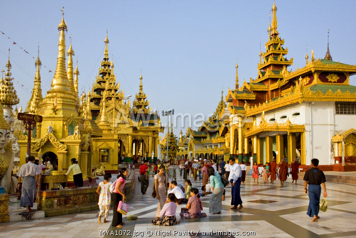 Myanmar, Burma, Yangon. Buddhists pray at the small stupas, temples, shrines, prayer halls, pavilions, and religious images and statues at the Shwedagon Golden Temple.