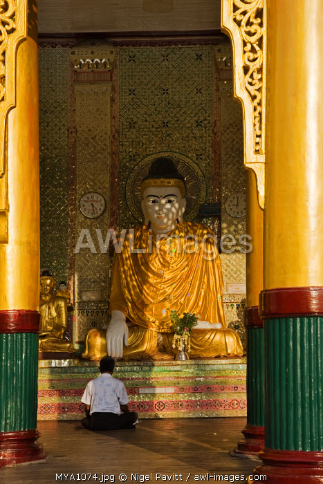 Myanmar, Burma, Yangon. A devout Buddhist praying at the feet of a Buddha statue in the Shwedagon Golden Temple complex.