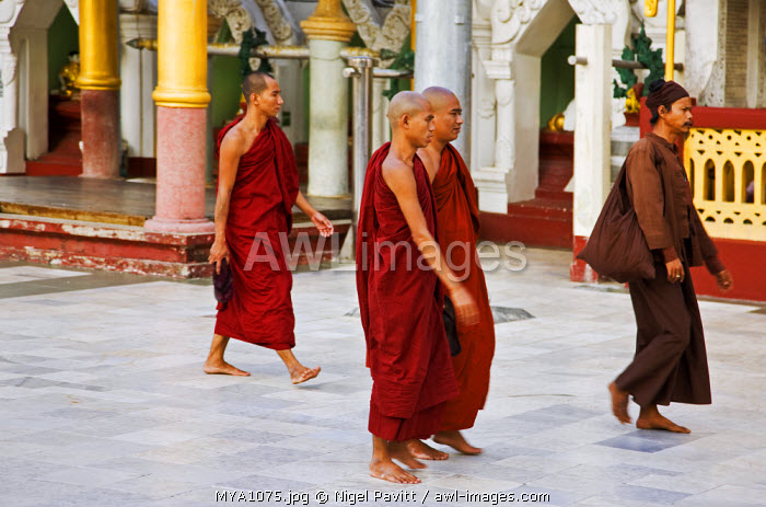 Myanmar, Burma, Yangon. Buddhist monks at the 2,540-year-old Shwedagon Golden Temple complex, the largest and most scared of all Buddhist sites in Myanmar.