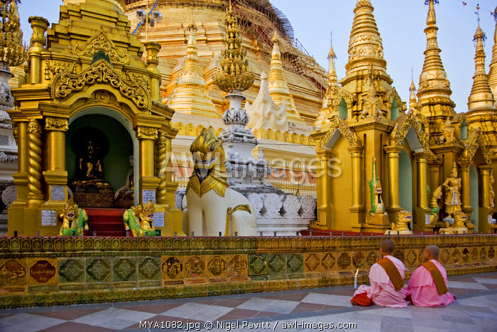 Myanmar, Burma, Yangon. Two young Buddhist nuns pray at the Shwedagon Golden Temple complex, the largest and most scared of all Buddhist sites in Myanmar.