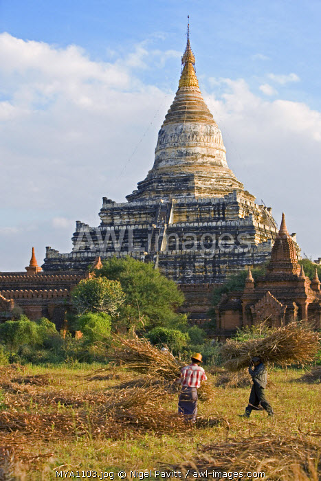 Myanmar. Burma. Bagan. The ancient Buddhist stupa of Shwesandaw on the central plain of Bagan. The Bagan dynasty built 2,229 temples between 1044 and 1287.