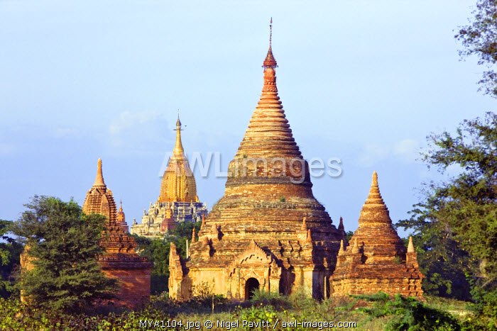 Myanmar. Burma. Bagan. Ancient Buddhist temples near the Shwesadaw stupa. The golden temple in the rear is the historic Ananda temple built in 1091.