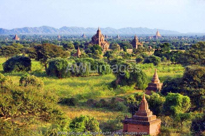 Myanmar. Burma. Bagan. Ancient Buddhist temples on the central plain of Bagan viewed from Shwesandaw stupa. The Bagan dynasty built 2,229 temples in 200 years.