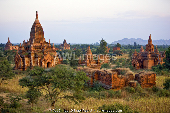 Myanmar. Burma. Bagan. Ancient Buddhist temples on the central plain of Bagan viewed from Tayokpye Temple. The Bagan dynasty built 2,229 temples in 200 years.